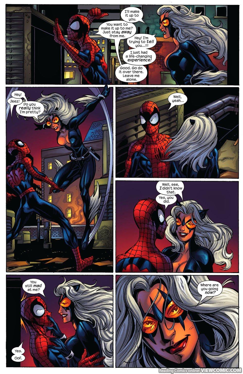 Spiderman Kiss Black Cat In Bed