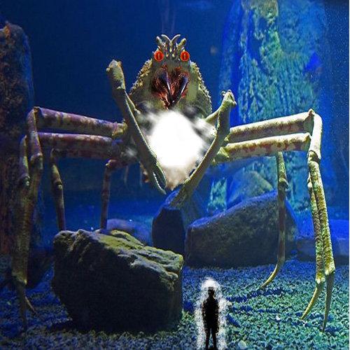 Stephen King Comp: It It Stephen King Spider