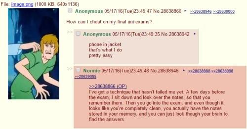 cheat on the exam
