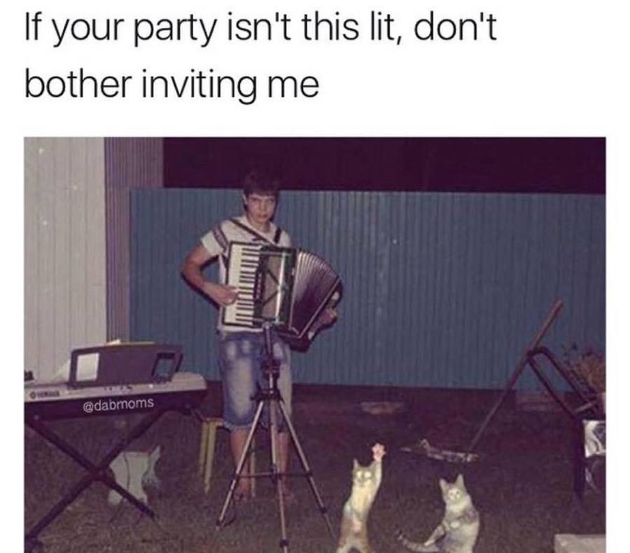 Belly Dancing Memes