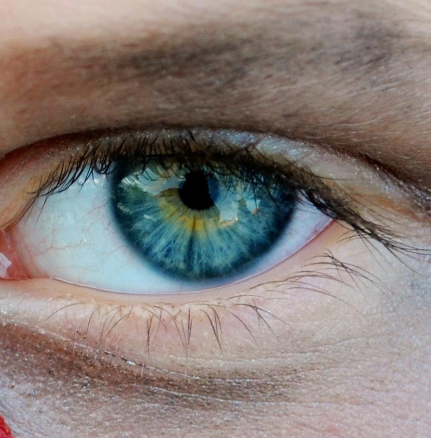 картинки серых с голубым глазами часто сейчас применяются