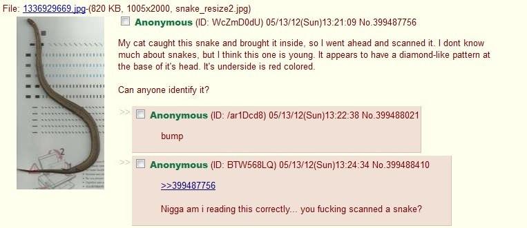 4chan folder