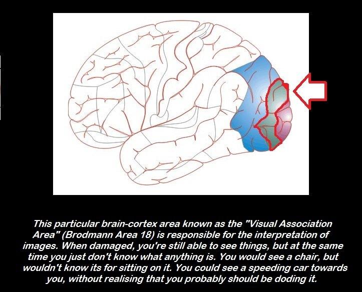 Random Medical Facts 1